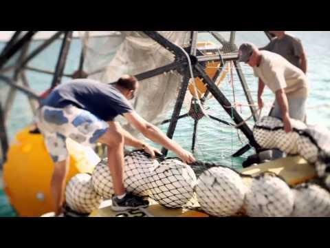 Неисследованные глубины [5_5] Море или космос - Видео онлайн