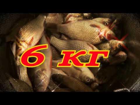 На рыбалке(В видео использована песня Вилли Токарева