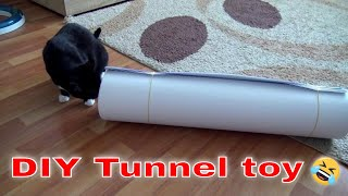 Tunnel toy for me ?