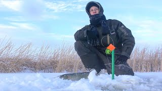 Щука на ЖЕРЛИЦЫ ПЕРВЫЙ ЛЕД 2020 2021 Окунь на балансир Рыбалка на ТОНКОМ льду