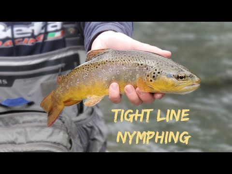 Nymphing Central PA | Penns Creek Fly Fishing | Tight Line Nymphing