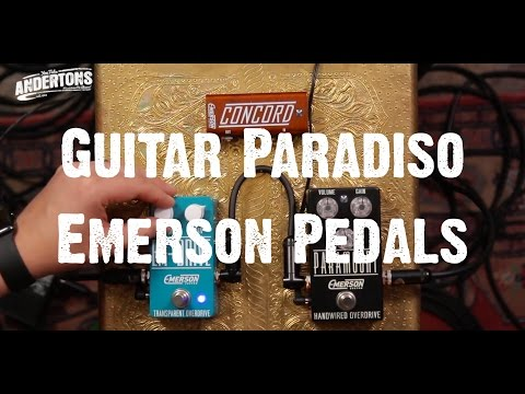 Guitar Paradiso - Emerson Paramount & EM-Drive - Organic And Gluten Free