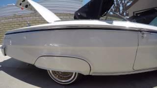 My 1962 IMPALA convertible