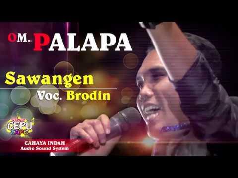 BRODIN Sawangen OM PALAPA EXPO CEPU 2017