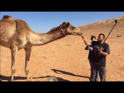 Oman Weekend Travel ( Ibra / Wadi / Safari )