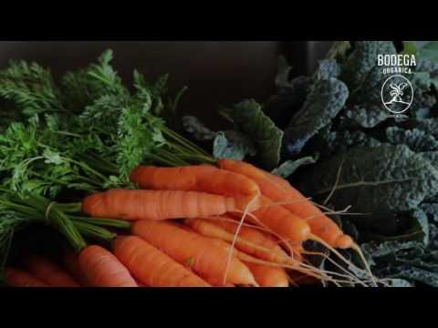 Video bitácoras - Como hacer la bitácora de la cosecha