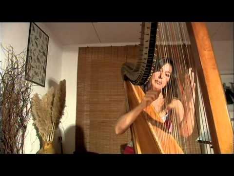 Carla They - Concerto per sola Arpa (Ponti sul Mincio)