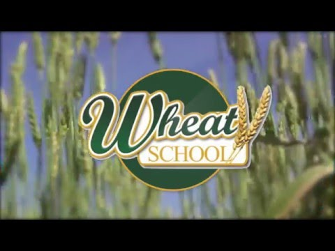 Wheat School: Do You Farm in a High-Yield or Low-Yield Wheat Zone?