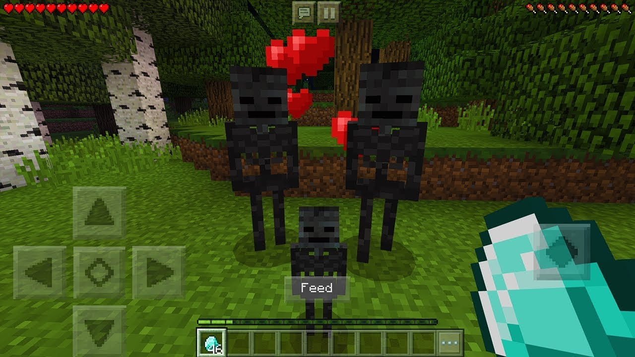 How To Breed Wither Skeletons in Minecraft Pocket Edition (Wither Skeleton  Breeding Addon)