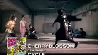 家庭教師ヒットマンのエンディングテーマでブレイクしたCHERRYBLOSSOMの...