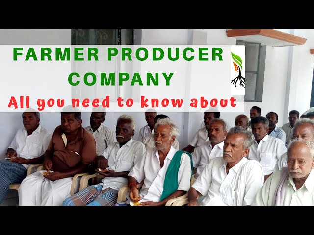 What are Farmer Producer Organisations ?