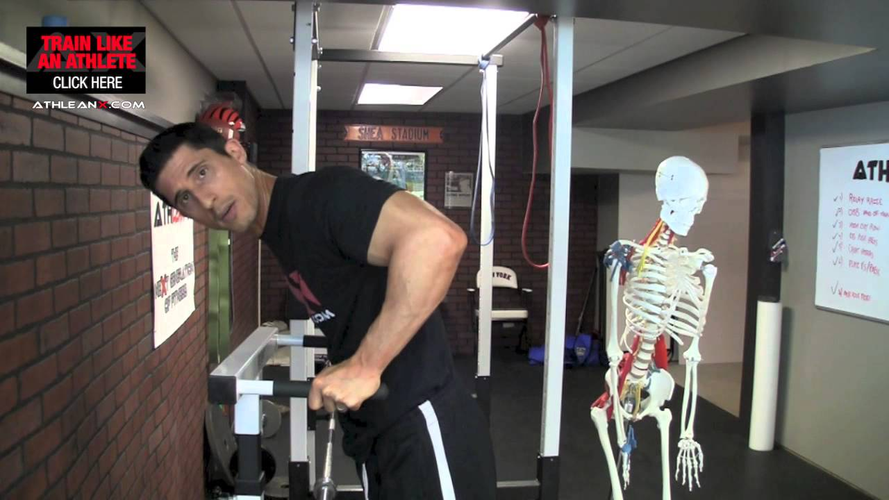 Why Dips Don T Really Work Your Triceps How To Fix It Youtube
