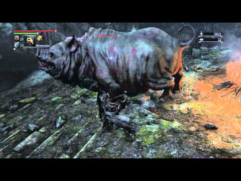 Bloodborne: Are You Okay? BUSTER WOLF!