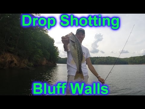 Drop Shotting Bluff Walls (HOW TO) on Lake Allatoona