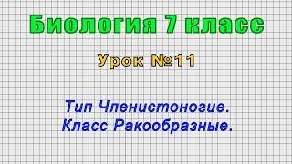 Биология 7 класс (Урок№11 - Тип Членистоногие. Класс Ракообразные.)