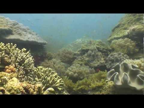 Barren Isles Madagascar