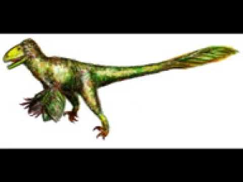 birdlike dinosaurs tribute   20 subscribers special!