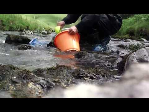 Gold panning an cleaning a crevice out ..