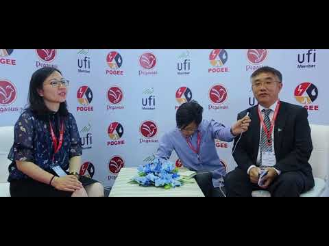 Chinese Provincial Government representative sharing his remarks about POGEE 2018