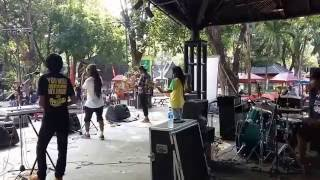 natty dread - can't help falling in love/to love somebody (@pasar seni-ancol)