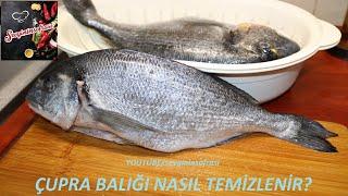 Çupra Balığı Nasıl Temizlenir? Tüm Ayrıntılarıyla !!! Balık Tarifleri sevginin sofrasi