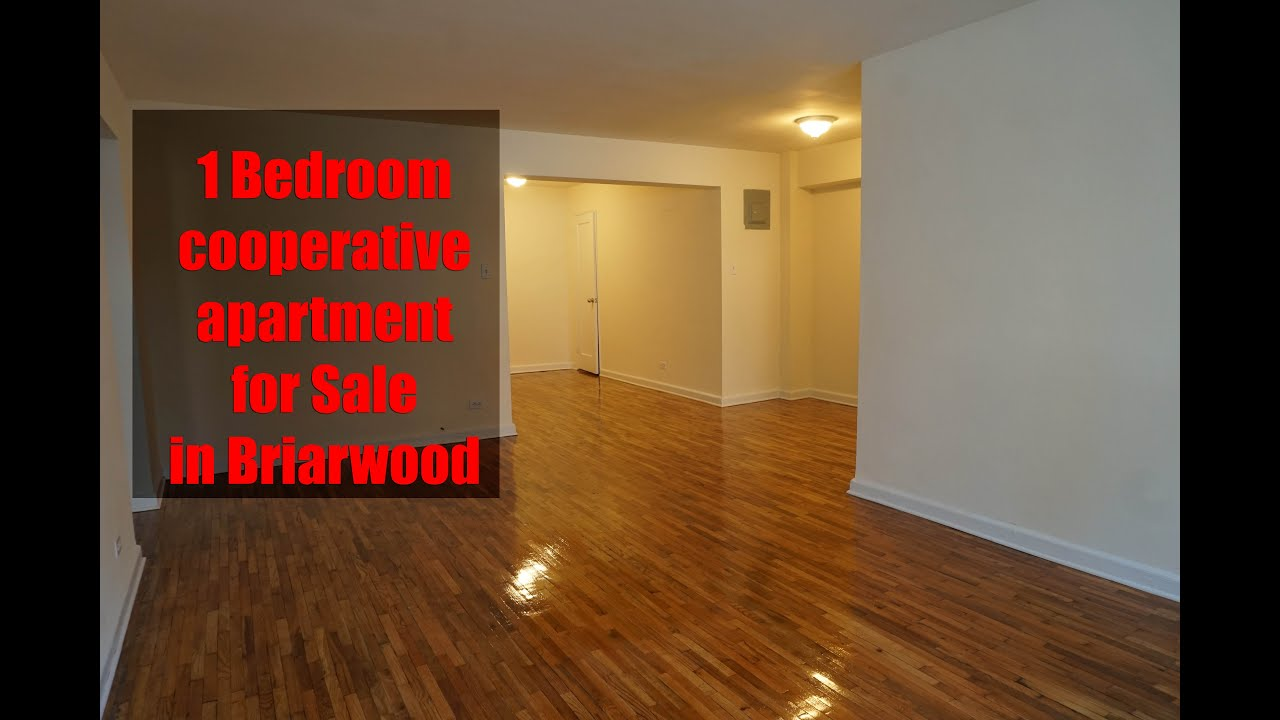 1 bedroom cooperative apartment for sale in briarwood for 1 bedroom apartments for sale nyc