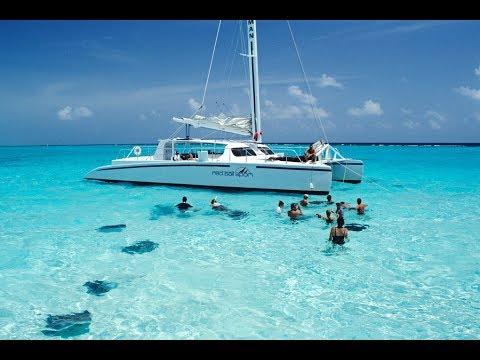 Cayman Island Excursion Catamaran Stingray City, MSC Divina