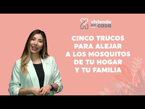 ¿Cómo ahuyentar a los mosquitos de tu casa?