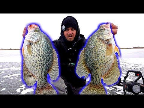 Catching GIANT 15 Inch Crappie!!! (Ice Fishing PB)