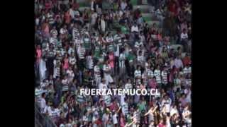 Resumen en fotos de Temporada de Club de Deportes Temuco 2013