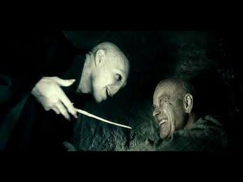 Voldemort Vs Grindelwald