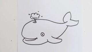 How to draw cute cartoon whale YouTube