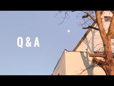 🥨 Q&a: Answering Questions