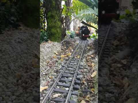 Garden LGB train. NZ