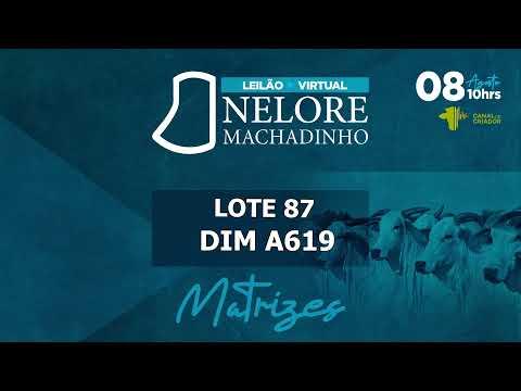 LOTE 87 DIM A619