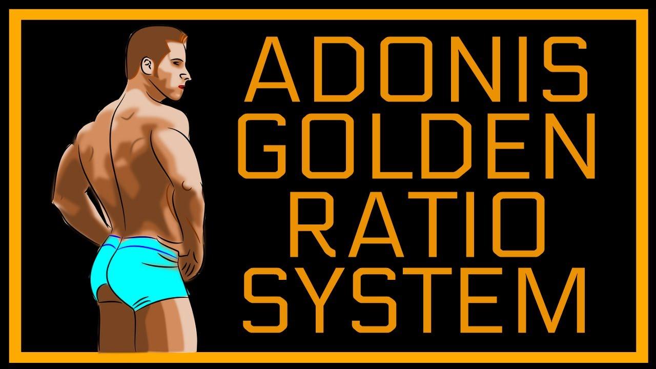 Adonis Golden Ratio Pdf
