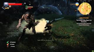 The Witcher 3: How to Kill a Werewolf.