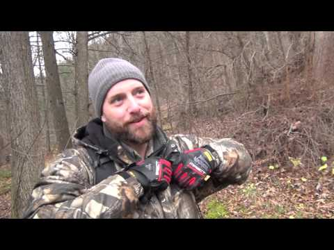 PA Black Bear Bow Hunting