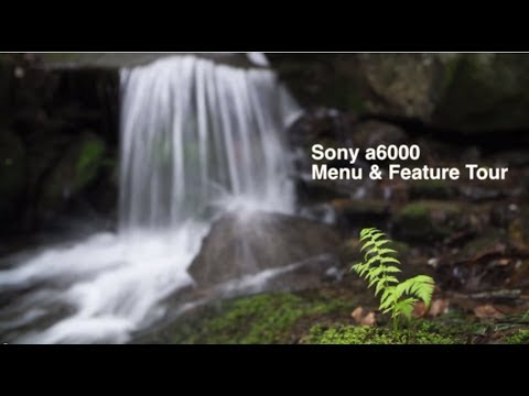 Camera Guide and Tips: How to Use the Sony a6000 Features and Menu Explained