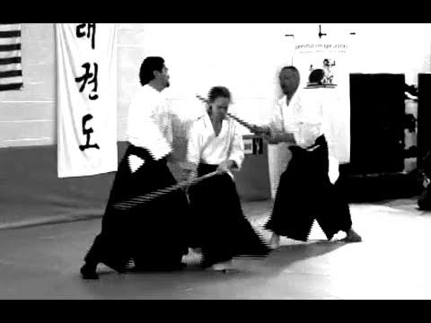 Kangeiko 2015 - Sensei Guy Hagen - Principles and Tactics for Multiple Attackers