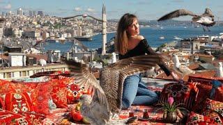 Kubbe İstanbul Fotoğraf \u0026 Video Seyir Platformu