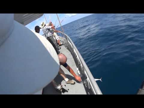 Tuna Fishing Texas Gulf October 2015