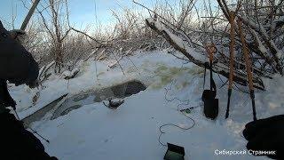 Рыбалка на паук подъёмник Ловим огромных карасей в болотном ручье