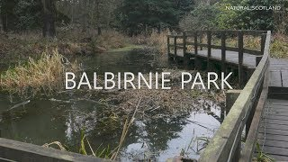 Balbirnie Park Winter