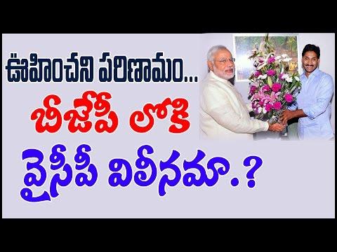 ఊహించని పరిణామం.. BJP లోకి YCP విలీనమా..? | will YCP join in BJP.? | PulihoraNews
