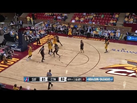 Scotty Hopson - Highlights of 2013-14 NBA D-League Season
