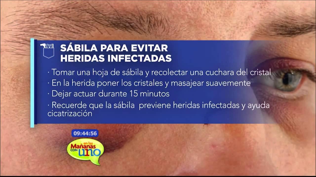 la sabila protección a cicatrizar heridas internas