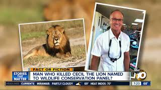 """""""Cecil the Lion"""" killer named to conservation panel?"""