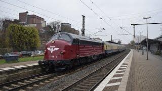 Nohab MY 1142 mit Rheingold am 28.11.2014 in Peine