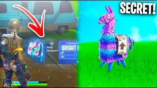How To Unlock *NEW* 'Bright Bag' Hidden Item in Fortnite! (Secret RAINBOW BACKPACK Gameplay)